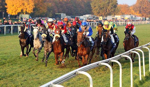 Internationaler Renntag mit vielen Aktionen rund ums Pferd