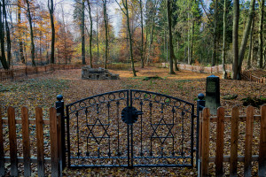 Ewige Ruhe: Der Alte Jüdische Friedhof am Ende der Deisterstraße ist wieder sichtbar. foto:kasse