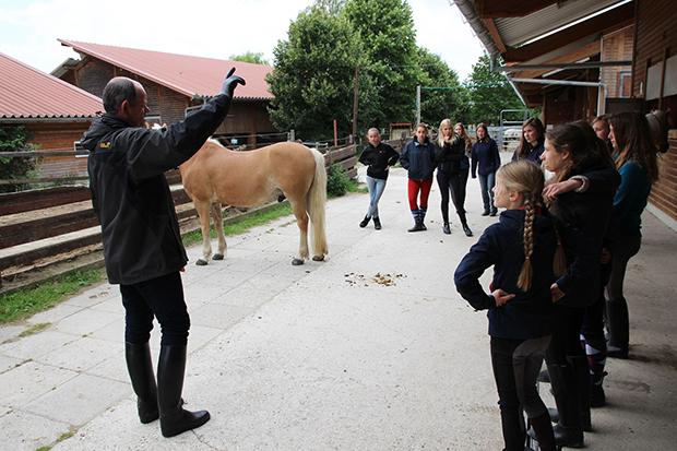 Sportassistenten-Ausbildung mit Pferd: Referent Jörg Beismann erklärt der Gruppe den Umgang mit dem Tier.