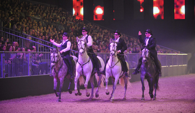 """Vorverkauf für die Gala """"Nacht der Pferde"""" ist gestartet"""