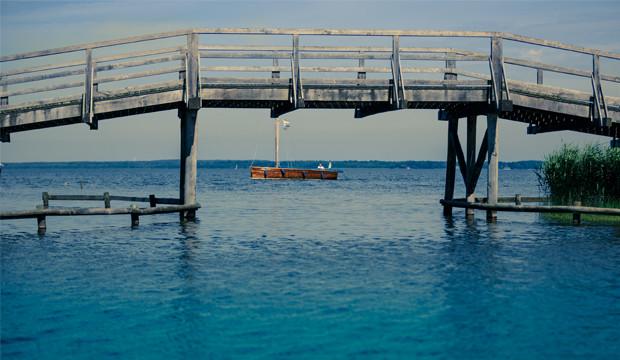 Im Steinhuder Meer vermehren sich die Blaualgen