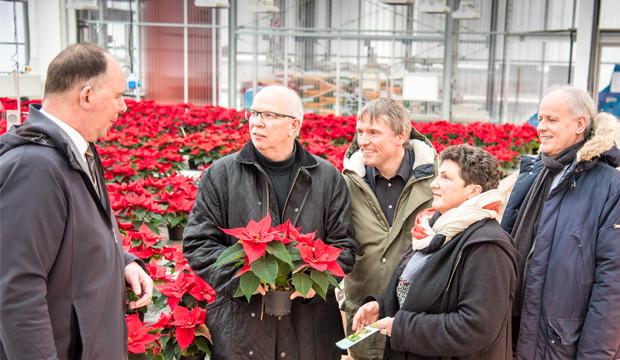 Strategien für mehr Klimaschutz im Gartenbau