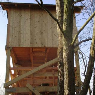 Naturpark Steinhuder Meer: Aussichtsturm ist saniert