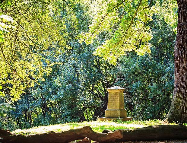 Hat Gartengeschichte geschrieben: Der Hinübersche Garten zwischen der Leine und dem Kloster Marienwerder hat Gartengeschichte geschrieben: Der Hinübersche Garten.