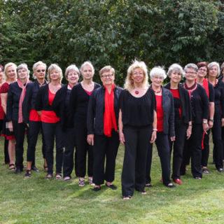 Benefizkonzert der Calenberger Musikschule