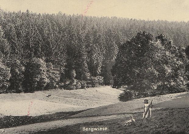 Grüne Idylle: Blick über die Bergwiese. Heutzutage hätte ein Bauprojekt wie das Sporthotel an dieser Stelle wohl wenig Chancen auf Realisierung.