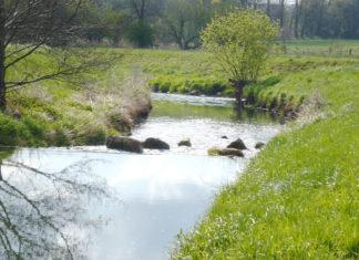 Else Hochwasserschutz