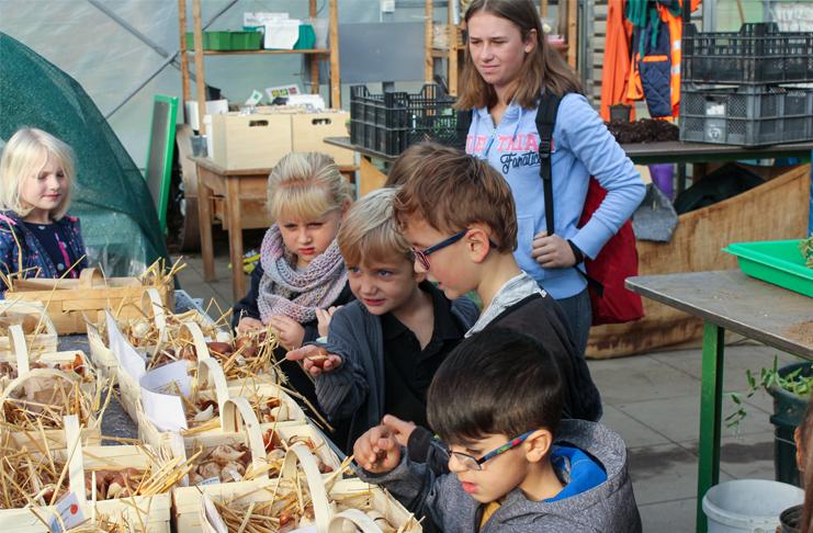 Insbesondere für Kinder und Jugendliche gibt es bei der Zwiebel- und Staudenwoche viel zu entdecken.