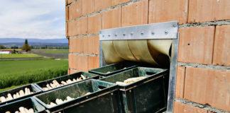 Arbeitsschutz und Hygieneschutz mangelhaft: Die IG BAU fordert bessere Bedingungen für Erntehelfer.